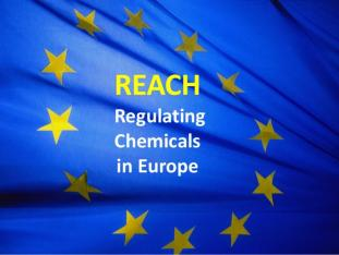 EU REACH flag