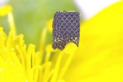 Graphene aerogel for 3d printing image