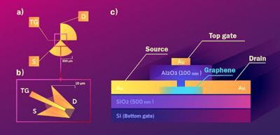 Graphene detector reveals THz light's polarization image