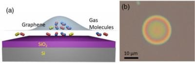 Graphene bubbles and trapped molecules image