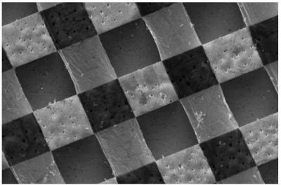 Graphene carpets enhance neural communication image