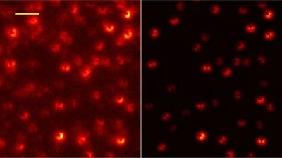 Single molecules successfully demostrated image