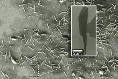 Graphene oxide nanoscrolls for water treatment image