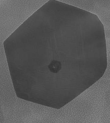 Microscope image of a graphene crystal on a palladium leaf image