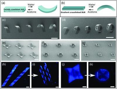 Share  Email  Home Nanotechnology Nanophysics Home Nanotechnology Nanomaterials JANUARY 11, 2021 FEATURE  Self‐folding 3-D photosensitive graphene architectures image