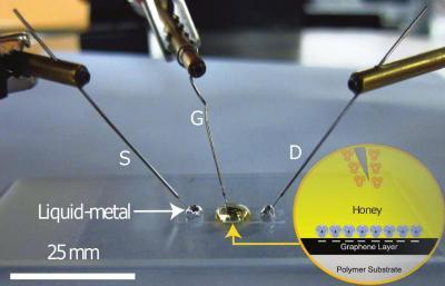 Honey to help make graphene transistors image