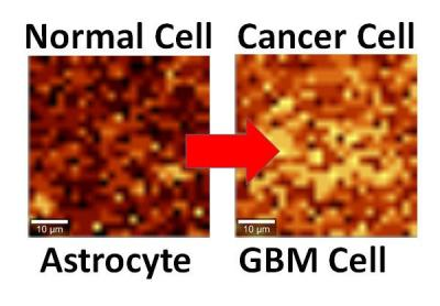 Graphene to detect cancer image