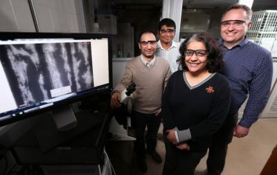 Graphene helps regenerate nerves image