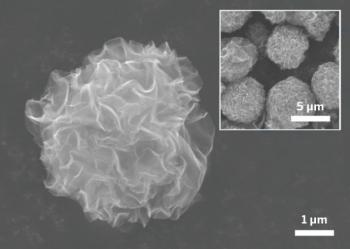 Korean scientists pompom graphene image