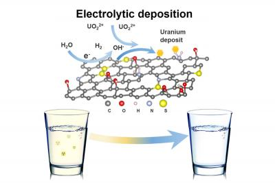 Using graphene foam to filter toxins from drinking water image