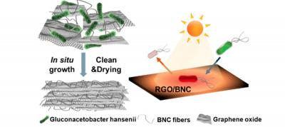 Researchers use bacteria to create a graphene oxide based water filter that kills bacteria image