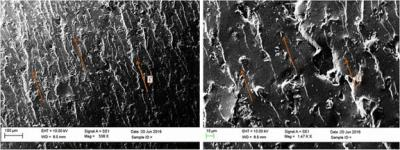 SEM images of fracture surface of aligned GNP based epoxy composite