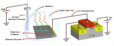 Graphene sensor detects cortisol in sweat image