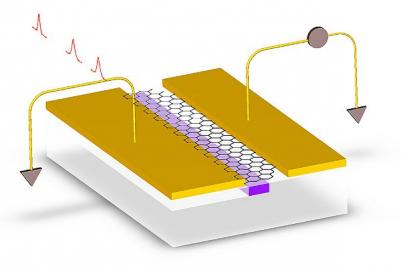 Graphene-on-silicon photodetector design