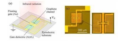 Graphene room temperature MIR pyroelectric bolometer image