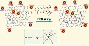 Graphene Oxide anticancer drug carrier photo