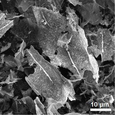 Tin oxide graphene hybrid materials through SEM image