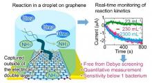 Graphene-based sensors detect cancer-causing bacteria image